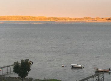 Søfryd en dejlig morgen1